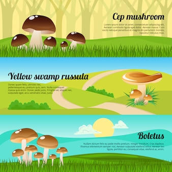 Ensemble de bannières de champignons forestiers