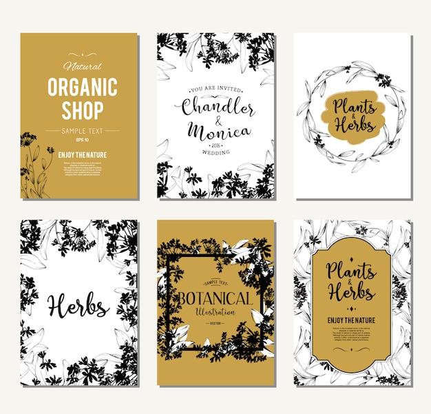 Ensemble de bannières de plantes et d'herbes. elément de design ou carte d'invitation