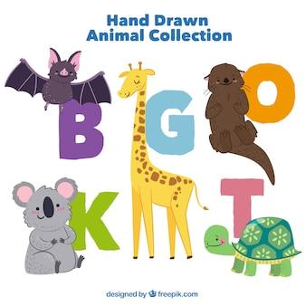 Ensemble de beaux animaux dessinés à la main avec des initiales