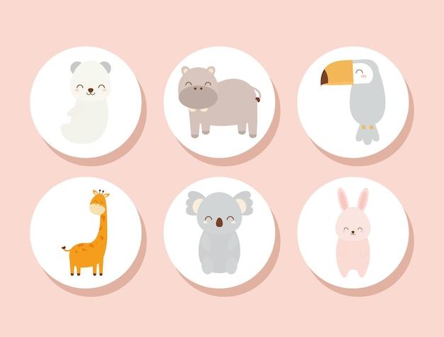 Ensemble de bébés animaux
