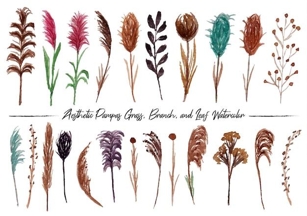 Un ensemble de belles branches d'herbe de pampa boho peintes à la main et aquarelle de feuilles