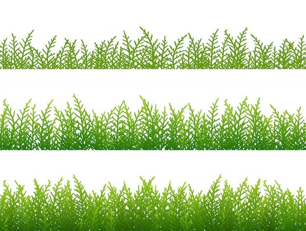 Ensemble de bordure transparente d'herbe