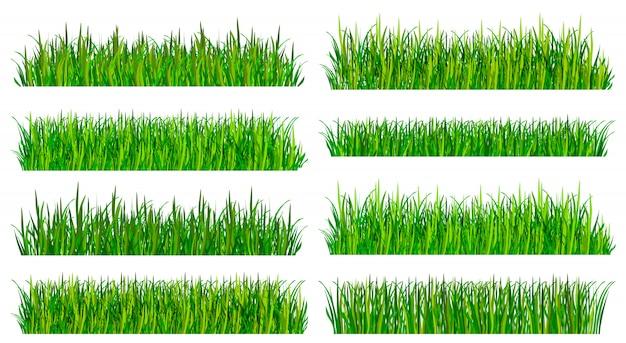 Ensemble de bordures d'herbe verte fraîche