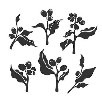 Ensemble de branches de café symbole de l'art aroma bean botanical tree leaves collection nature