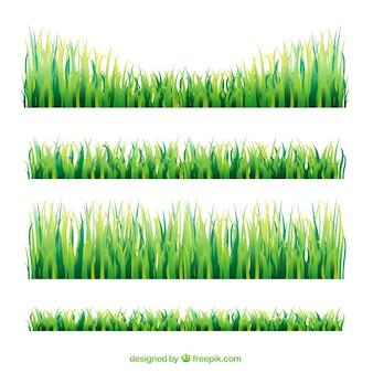 Ensemble de broders d'herbe avec différentes tailles