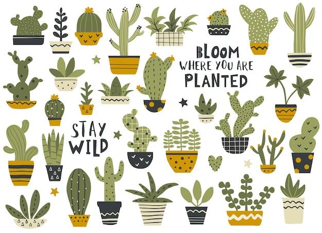 Ensemble de cactus et de succulentes avec des citations de calligraphie, collection de plantes d'intérieur. illustration vectorielle dessinés à la main.