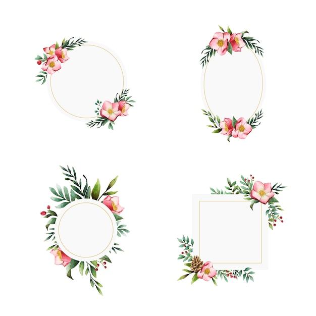 Ensemble de cadres de fleurs d'hellébore peints par des vecteurs aquarelles