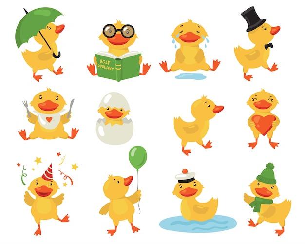 Ensemble de canard drôle