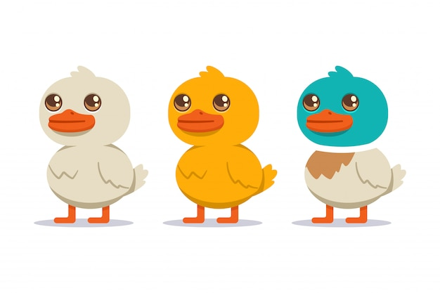 Ensemble de canards blancs, jaunes et colorés. personnage de dessin animé oiseau isolé sur fond blanc.