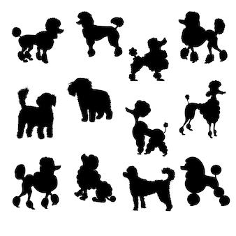 Ensemble de caniche silhouette vecteur illustration eps10