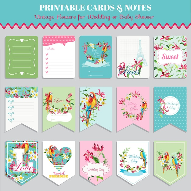 Ensemble de cartes de fleurs tropicales et oiseaux perroquet. anniversaire, mariage, étiquettes de douche de bébé. conception de vecteur. illustration de l'été.