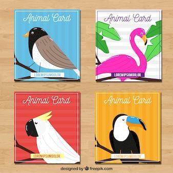 Ensemble de cartes avec des oiseaux exotiques