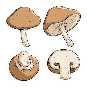 Ensemble de champignons avec un style de dessin à la main coloré