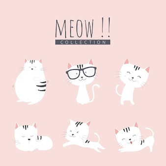 Ensemble de chat adorable.