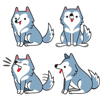 Ensemble de chien husky sibérien dans différentes poses.
