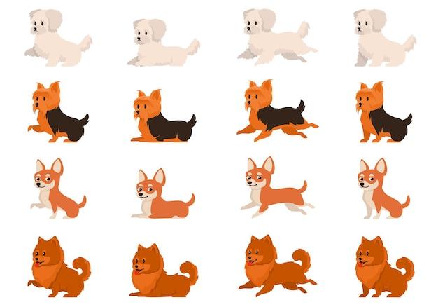 Ensemble de chiens dans des poses différentes. bichon bolognese, yorkshire terrier, chihuahua et spitz en style cartoon.