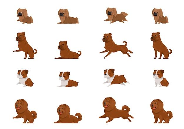Ensemble de chiens dans des poses différentes. pékinois, shar pei, bulldog anglais et chow-chow en style cartoon.