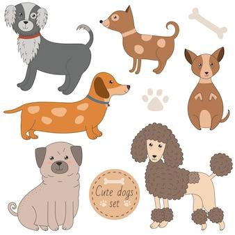 Ensemble de chiens mignons