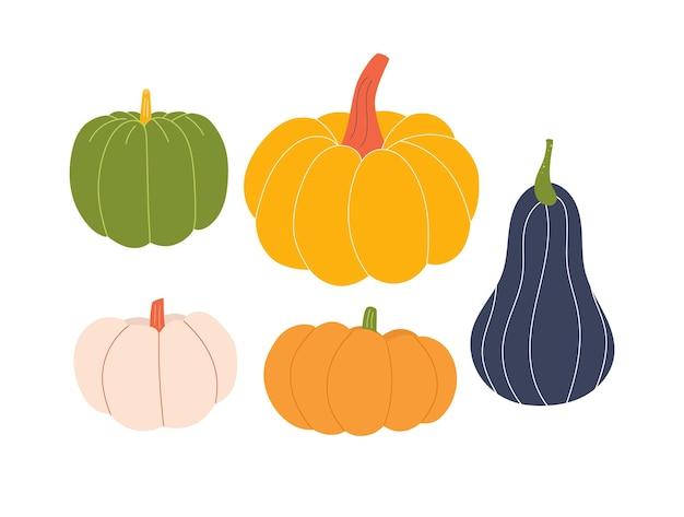 Ensemble de citrouilles mignonnes collection de légumes d'automne