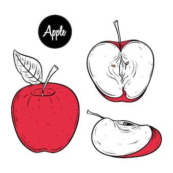 Ensemble de clipart tranche de pomme rouge sur style dessiné à la main