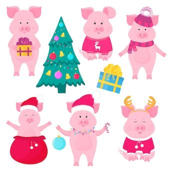 Ensemble de cochons mignons du nouvel an. personnages drôles. déguisement de père noël. piggy avec une boule de noël, dans un pull avec des cerfs, dans un chapeau et une écharpe, avec une boîte cadeau. sapin de noël décoré