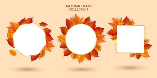 Ensemble de collection de cadres automne