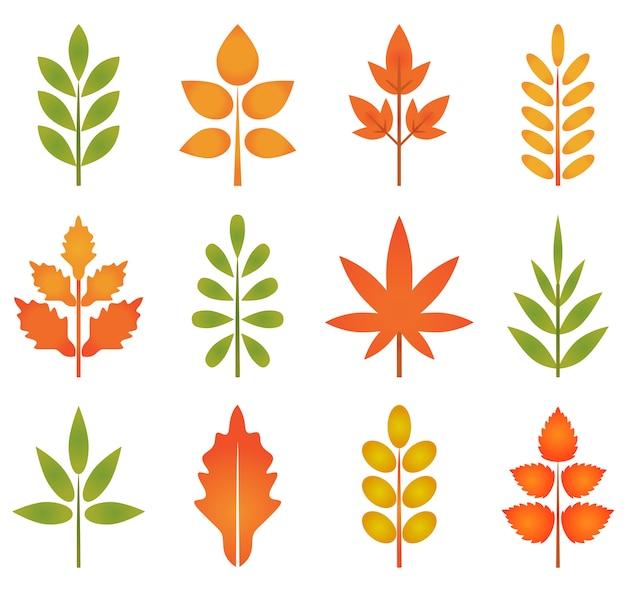 Ensemble de la collection de feuilles d'automne coloré, feuilles mignonnes et arbre pour élément de design