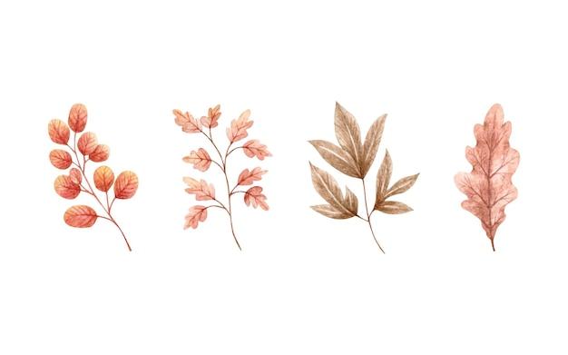 Ensemble de collection de feuilles séchées d'automne