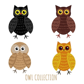 Ensemble de collection de hibou