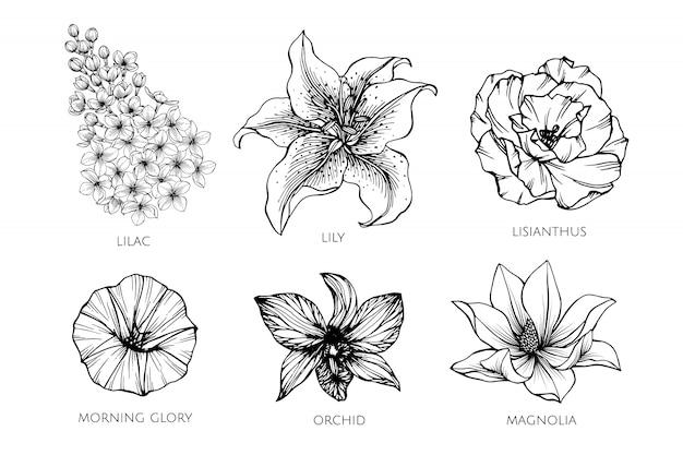 Ensemble de collection d'illustration dessin de fleur.