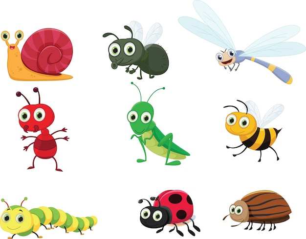 Ensemble de collection d'insectes mignon