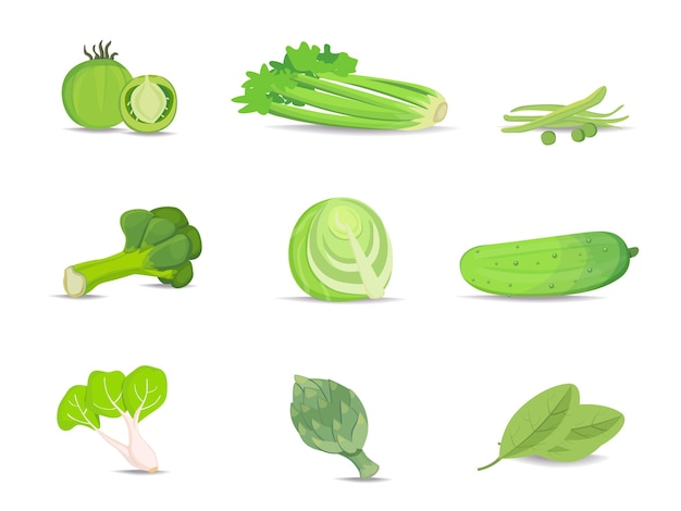 Ensemble de collection de légumes verts
