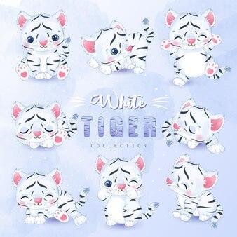 Ensemble de collection mignon petit tigre blanc