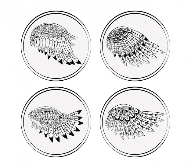 Ensemble de collections d'ailes rondes