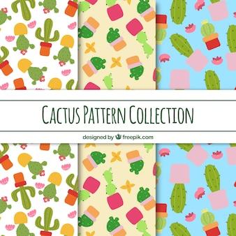 Ensemble coloré de motifs de cactus