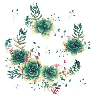Ensemble de compositions florales de plantes succulentes à la main dessiner style.