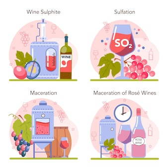 Ensemble de concepts de production de vin. sulfatation et macération des vins rouges et rosés. amélioration des caractéristiques, de l'apparence, du goût et de la durée de conservation des boissons alcoolisées. vin en bouteille ou en verre. illustration vectorielle