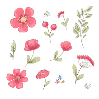 Ensemble de coquelicots rouges et de marguerites. dessin à main levée. illustration vectorielle