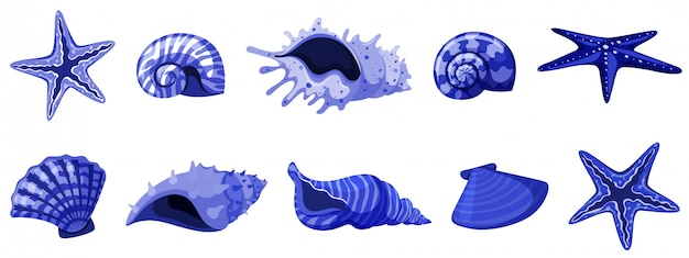 Ensemble de coquillages isolés de couleur bleue