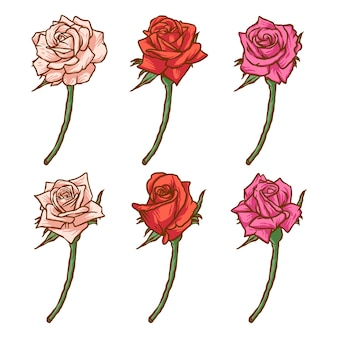 Ensemble de couleurs dessinées à la main de roses rouges