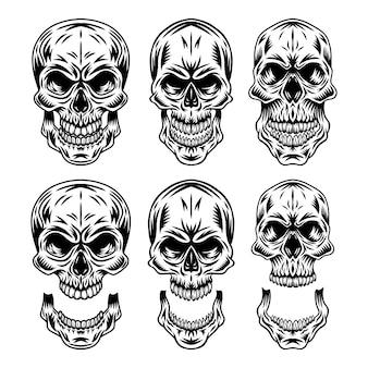 Ensemble de crâne humain rétro vintage et illustration isolée de mâchoire sur fond blanc.