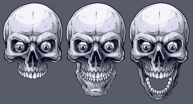 Ensemble de crânes humains noir et blanc graphique détaillé