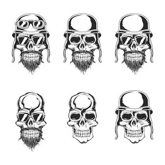 Ensemble de crânes