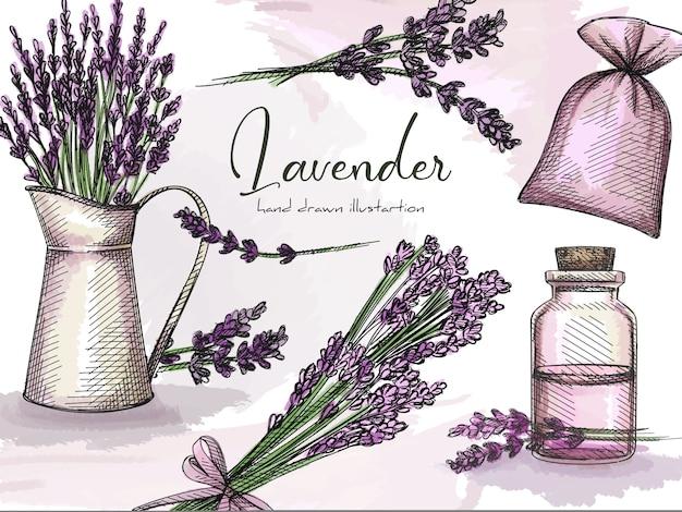Ensemble de croquis dessinés à la main coloré de lavande sur fond blanc. herbes et plantes. fleur de lavande avec un pot en verre, sac pour herbes, bouquet de lavande, fleurs de lavande dans un pot en métal. ensemble coloré