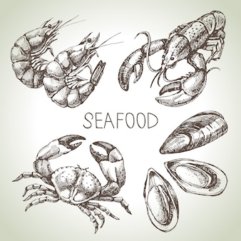 Ensemble de croquis dessinés à la main de fruits de mer. illustration