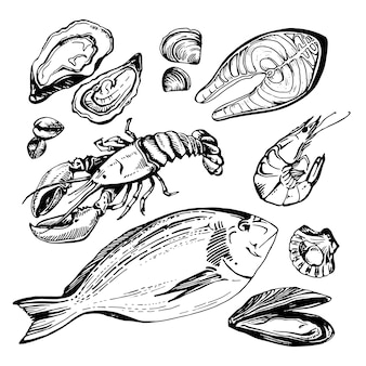 Ensemble de croquis dessinés à la main de fruits de mer.