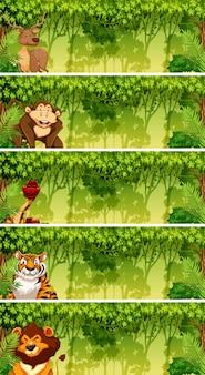 Ensemble d'animaux dans les scènes de la jungle