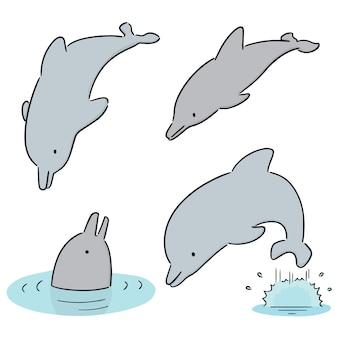 Ensemble de dauphin