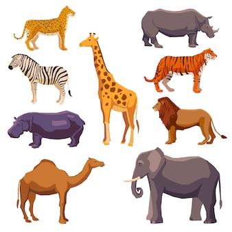 Ensemble décoratif animal d'afrique