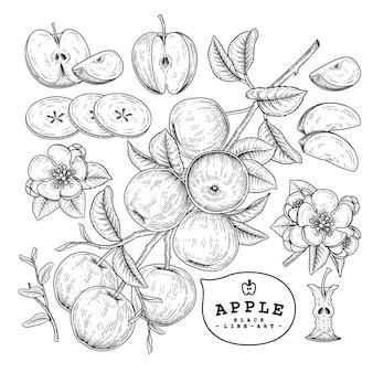 Ensemble décoratif apple vector sketch.